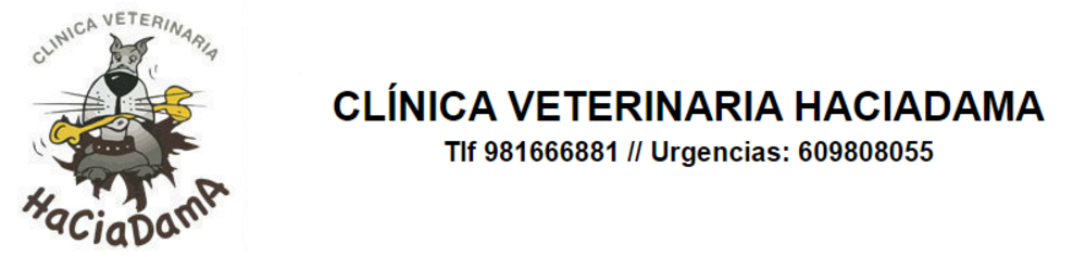 Clinica Veterinaria Haciadama